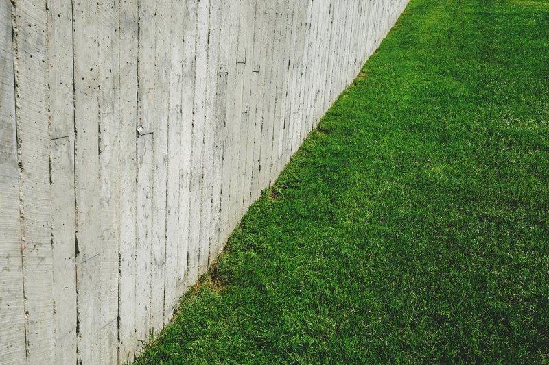 Well cut lawn
