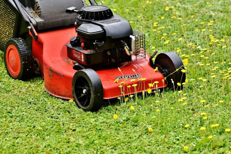 does mowing spread weeds